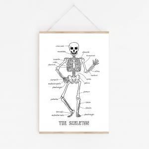 children's skeleton print