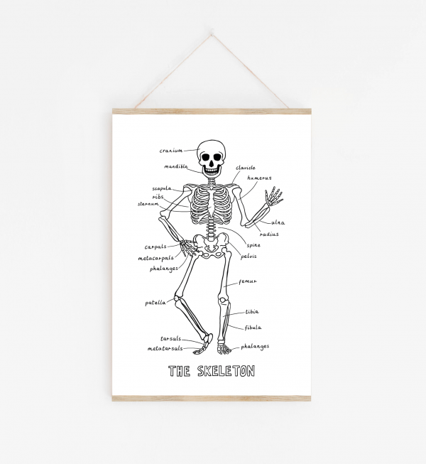 children's skeleton print