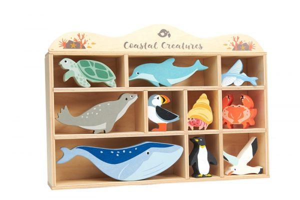 Tenderleaf sea creature animal shelf