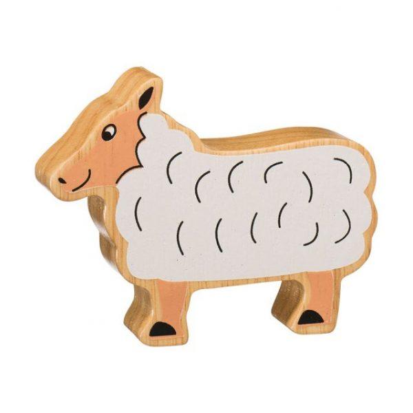 Lanka Kade sheep
