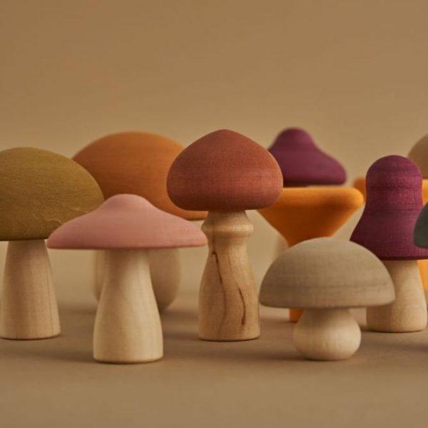 raduga grez mushrooms